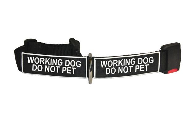 Teach Take Leash To Service Dog