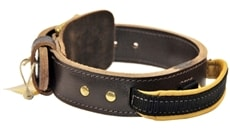 Simplicity+ Leather Dog Collar with Handle