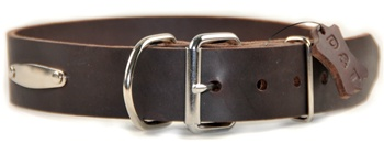 Silver Tag | Leather Dog Collar