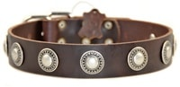 Simple Treasure | Leather Dog Collar
