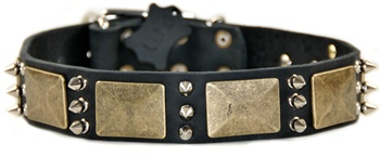 Beauty and the Bold | Spiked Dog Collar