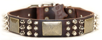 Crazy Combo | Spiked Dog Collar