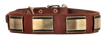 Brass Style | Leather Dog Collar