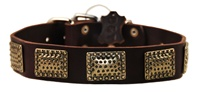 Drum Roll | Leather Dog Collar