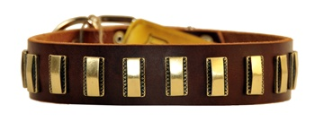 Brass Line | Leather Dog Collar