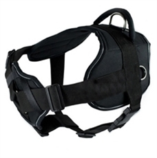 DT Harness with Chest Support | Clearance