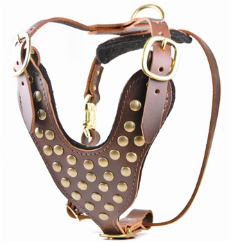 Stud Brother | Leather Dog Harness