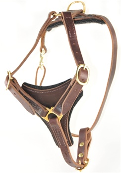 Dean's Choice | Leather Dog Harness