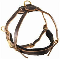 The Cowboy | Leather Dog Harness