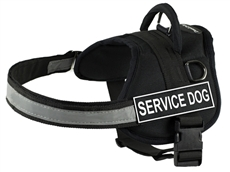 DT Works | Patch Dog Harness