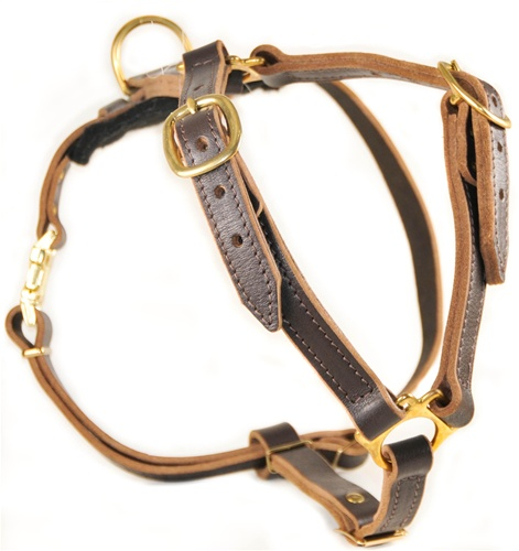 DTH7 2 dean & tyler dog products leather and nylon dog products leashes leather dog harness at suagrazia.org