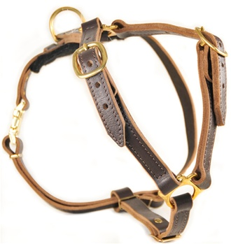 Tyler's Choice | Leather Dog Harness
