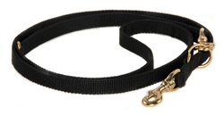 Nylon Night Leash