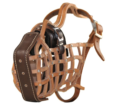 Basket Style Muzzle For Agitation Training The Guardian