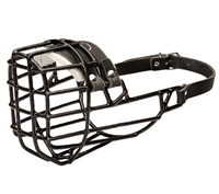 DT Freedom Winter | Basket Muzzle