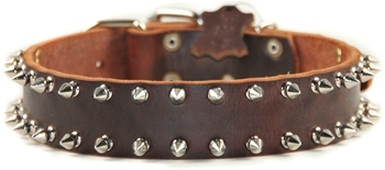 Spike Time | Spiked Dog Collar