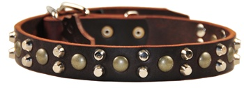 Bumps & Bits | Studded Dog Collar