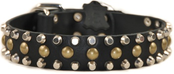 Studly | Studded Dog Collar