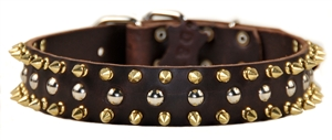 Golden Spike | Spiked Dog Collar