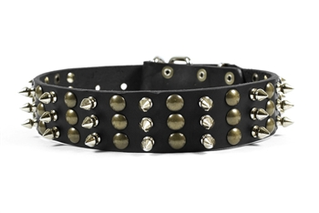 Tolerance | Spiked Dog Collar
