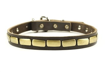 Plated Beauty | Leather Dog Collar