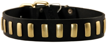 Plated Perfection | Leather Dog Collar